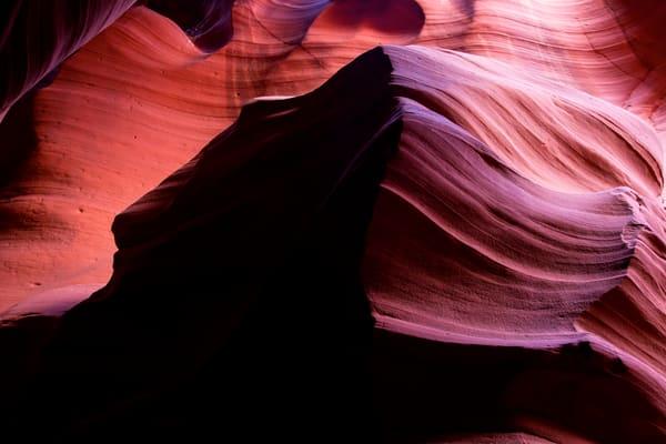 Beauty and the Beast, Arizona Desert Photo Print