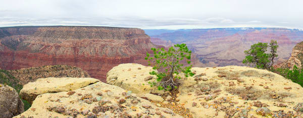 Hermits Point Grand Canyon Panorama photo