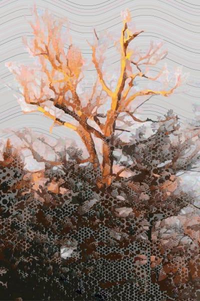 Leafless Tree at Dusk Wall Art