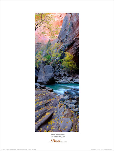 Autumn in the Narrows Poster