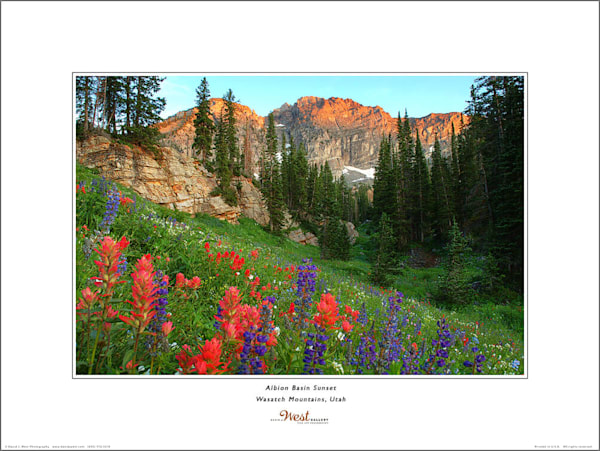 Albion Basin Sunset Poster