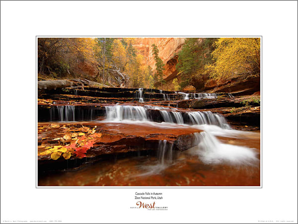 Cascade Falls in Autumn Poster