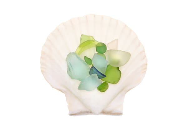 Shell and Sea Glass