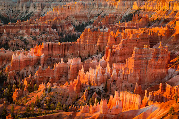 Bryce Canyon #2 Fine Art Photograph | JustBob Images