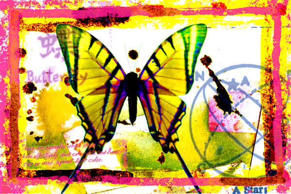 Butterfly No.2