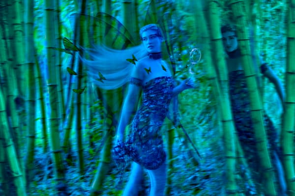 Bamboo Fairy