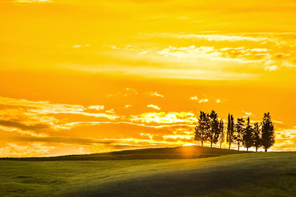 Sunrise in Tuscany Photograph for Sale as Fine Art