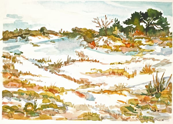 Talbot Dunes | Watercolor Landscapes | Gordon Meggison IV