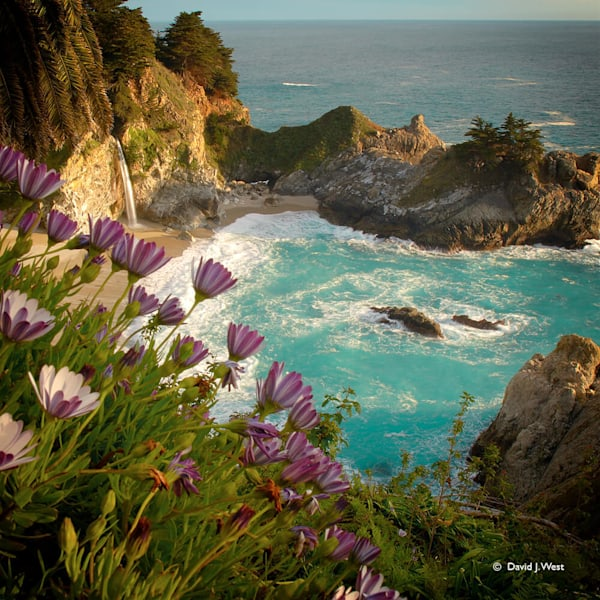 McWay Falls Square