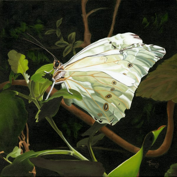 """Wings Of Light"" Art   Terri Davis Gallery"
