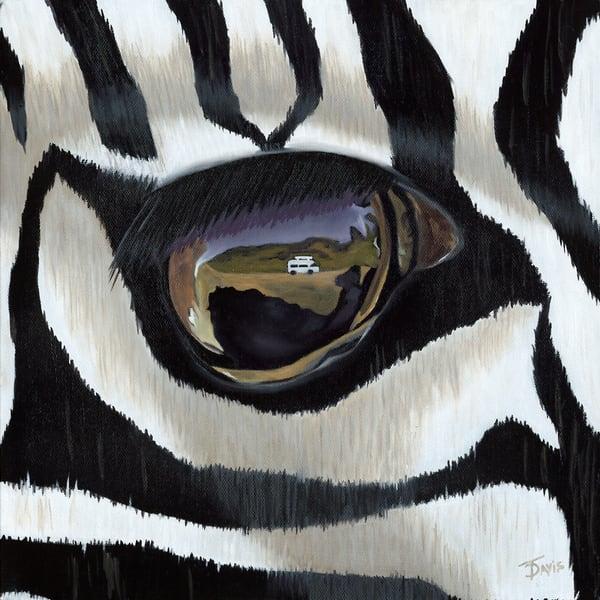 """Zebra's View"" Art   Terri Davis Gallery"