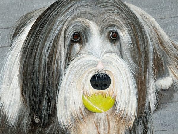"""Wanna Play Fetch?"" Art   Terri Davis Gallery"