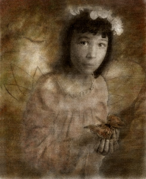 Hannah and the Butterfly