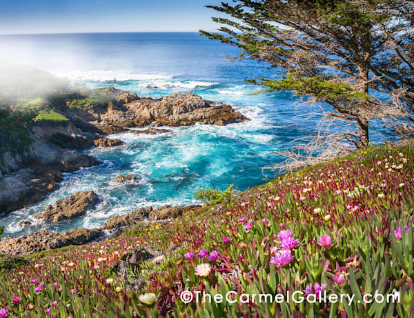 """Emerald Waters, California Coast"" 