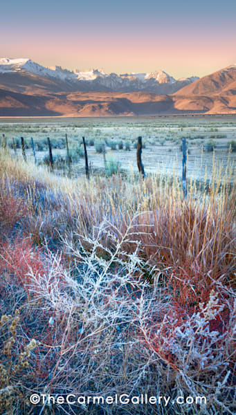 Autumn Frost Eastern Sierra