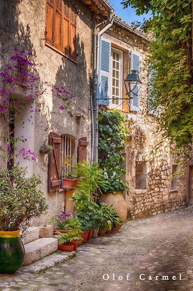 Fleurs De La Rue Art | The Carmel Gallery