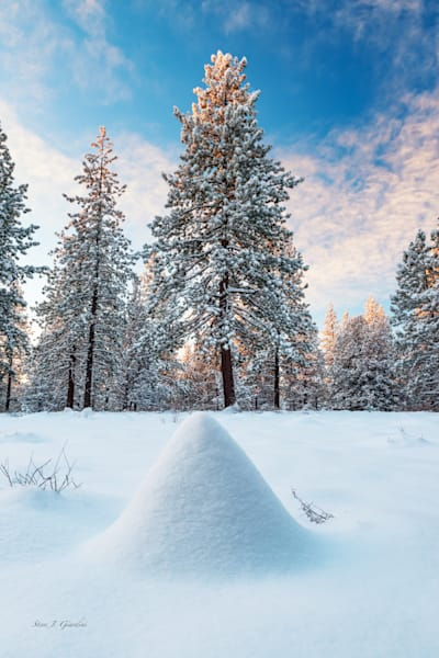 Deschutes Winter Wonderland (161621LNND8) Photograph for Sale as Fine Art Print