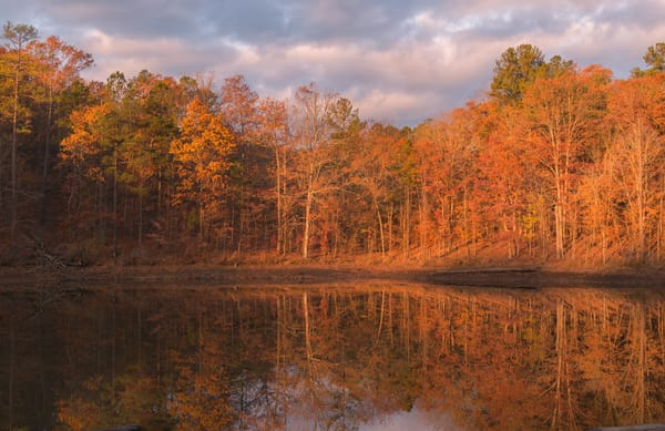 Stunning fine art prints of Georgia Landscapes | Susan J Photography