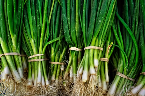 Photograph of Green Onions