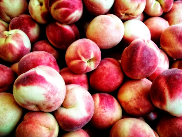 photograph of White peaches
