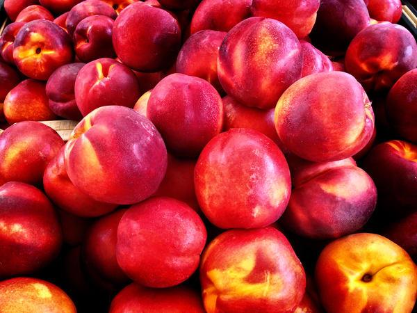 Photograph of nectarines