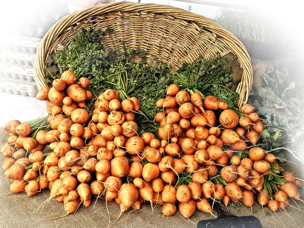 Photograph of round Parisian Carrots