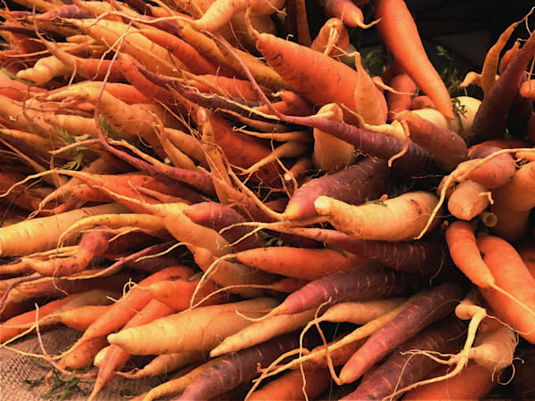 photograph of carrot tips