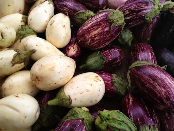 IMG 1610-white and purple eggplants