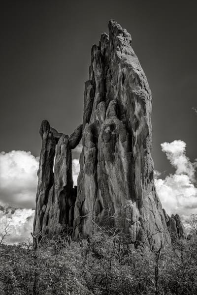 B&W Photo Garden of the Gods in Colorado Springs Vertical Image