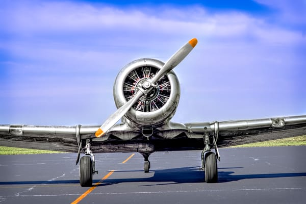 Texan AT-6/T-6 Trainer WWII Abstract Restored Aircraft fleblanc