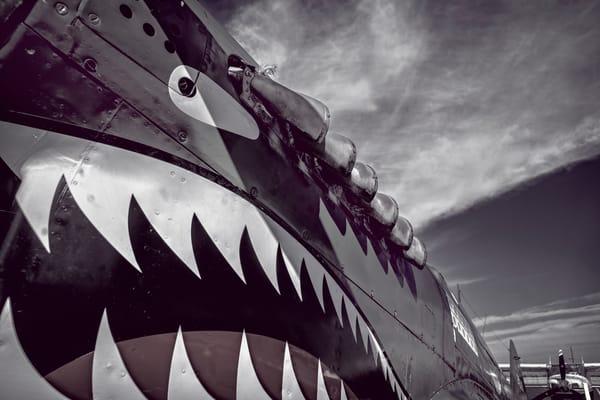 Curtiss P40 Flying Tigers War-hawk Shark Restored Military fleblanc