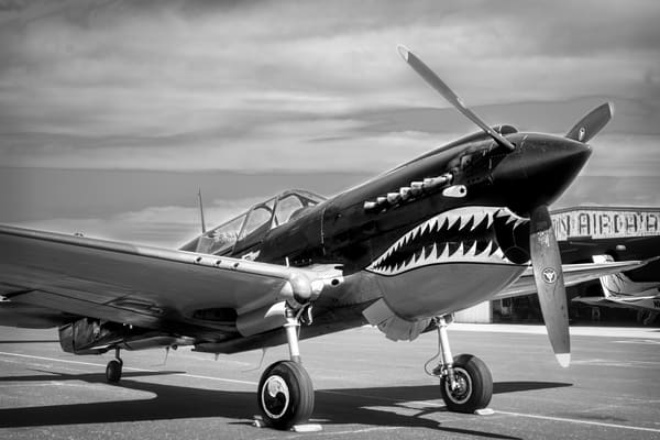 Curtiss P-40 Flying Tigers Tomahawk Restored Military fleblanc