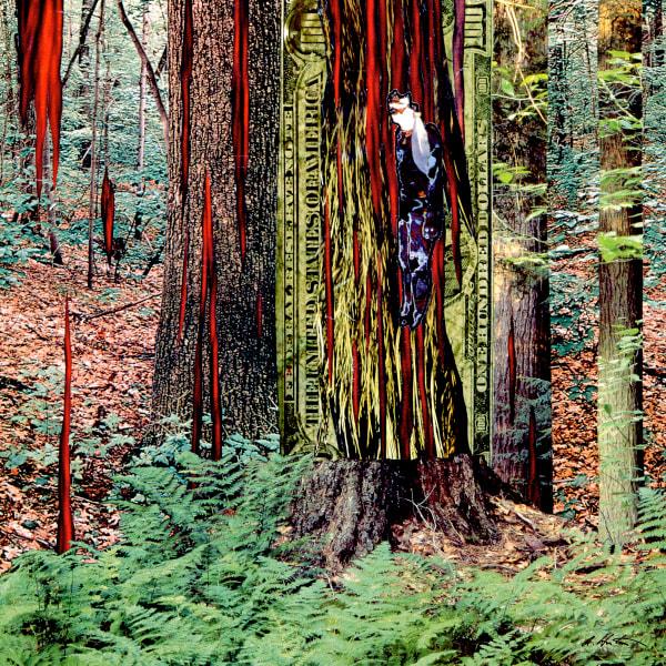 Fiber-Indian Woods