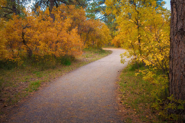 Autumn Colors on Full Display along this Castle Rock Colorado Trail