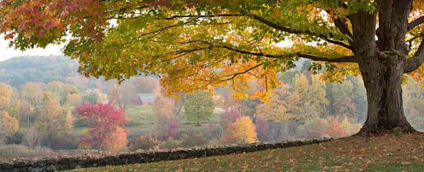 Autumn View Farmington CT