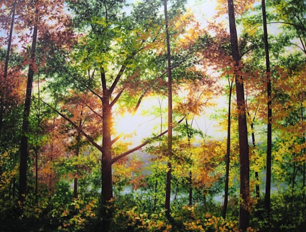 Light-filled Original Landscape Oil Paintings For Sale.