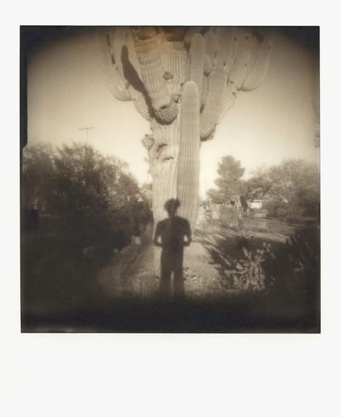 Tales Of The Hawk 'roid Art | Photographic Works and ArtsEye Gallery