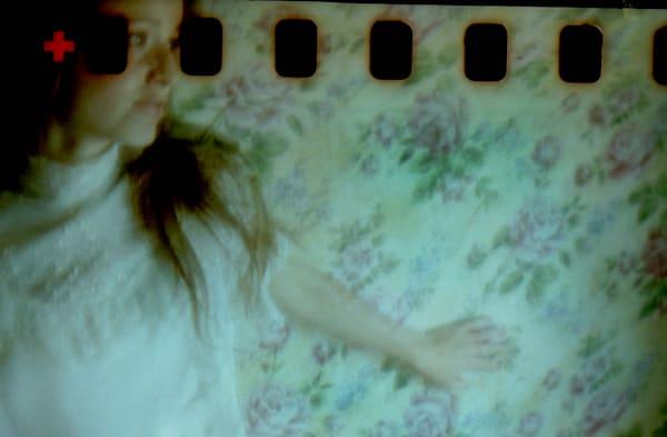 4th Curious Camera 2012