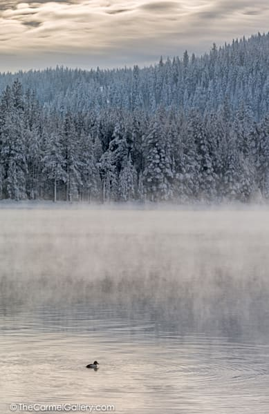 Donner Lake Mist Art | The Carmel Gallery