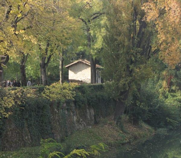 Autumn Sunlight Photography Art | Photoissimo - Fine Art Photography