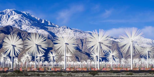 Desert Snowflake Photography Art | Foretography