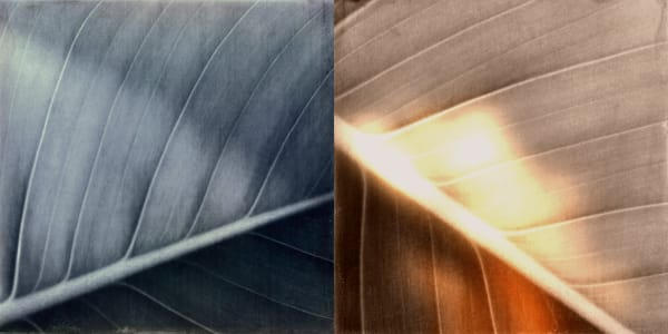 London Harris Studios Leaf Diptych