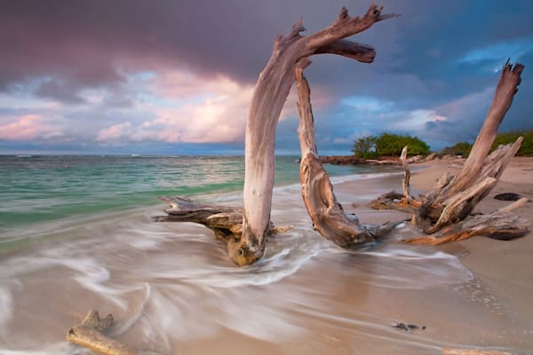 """Driftwood Sunset"" - Caribbean beach art photography"