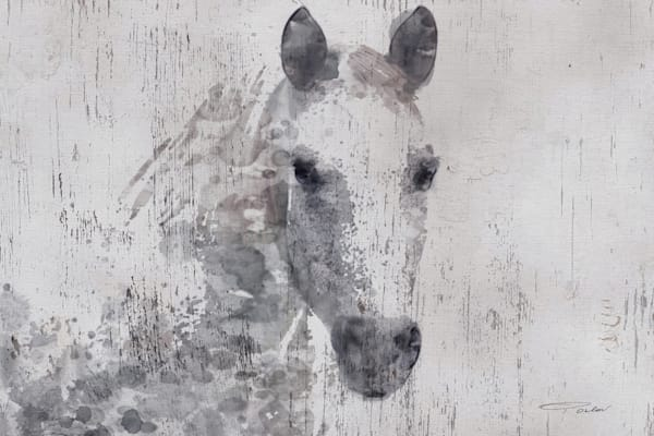 Gorgeous Dapple Horse. Cottage Chic White Farmhouse Rustic Horse Art by Irena Orlov.