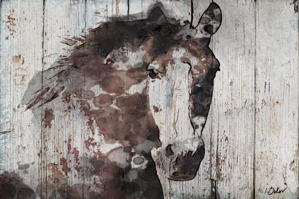 Wild Gorgeous Horse, Brown Farmhouse Rustic Horse Portrait
