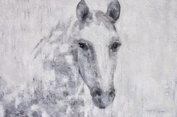 Gorgeous Dapple Horse, Horse Portrait. Equestrian Rustic Wall Art, Textured Decorative Horse Art, Farm House Wall Decor. Great Selection of Irena Orlov Horse Art.