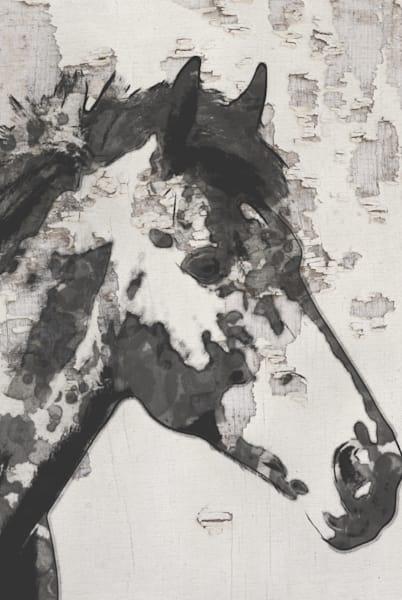 Orl 3347 Star Bright Horse Art | Irena Orlov Art