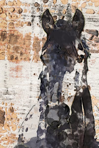 Night Knight. Horse Portrait. Equestrian Rustic Wall Art, Textured Decorative Horse Art, Farm House Wall Decor. Great Selection of Irena Orlov Horses Artworks.
