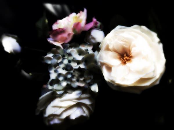 Orl 8447 1 Floral Inspiration 1 Art   Irena Orlov Art