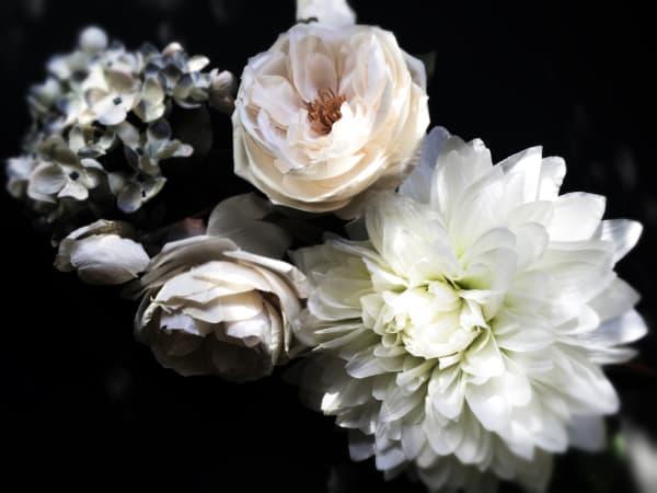 ORL-8454 Floral inspiration 8